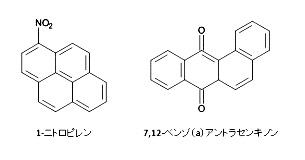 ニトロアレーンと酸素化PAHs